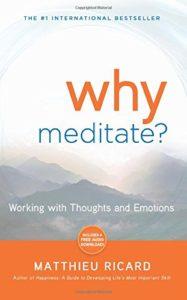 Matthieu Ricard Why Meditate?